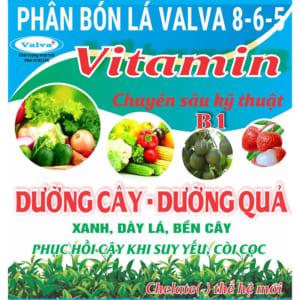 Viatamin dưỡng cây, quả